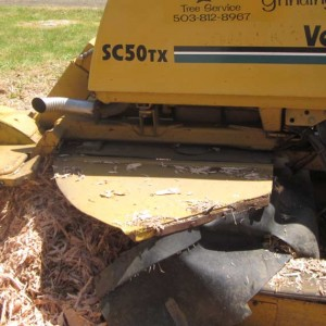 Stump Grinding Oregon