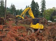 More about land and lot clearing