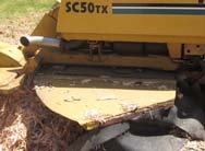 More about stump grinding