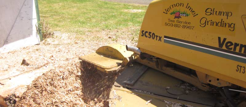 Stump Grinding by Vernon Imel Tree Service